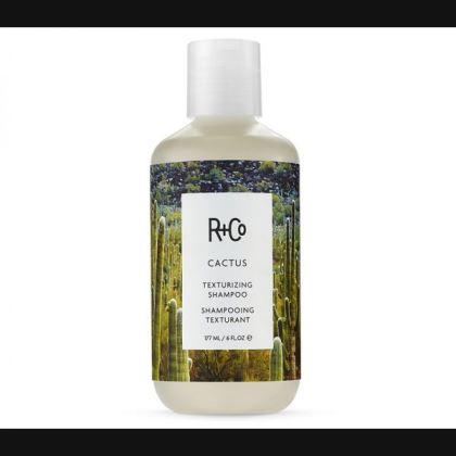 CactusTexturizing-Shampoo-R+Co-Amazon
