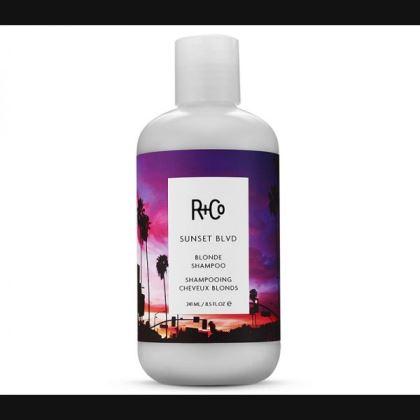 Sunset-Blvd-Blonde-Shampoo-R+Co-Amazon